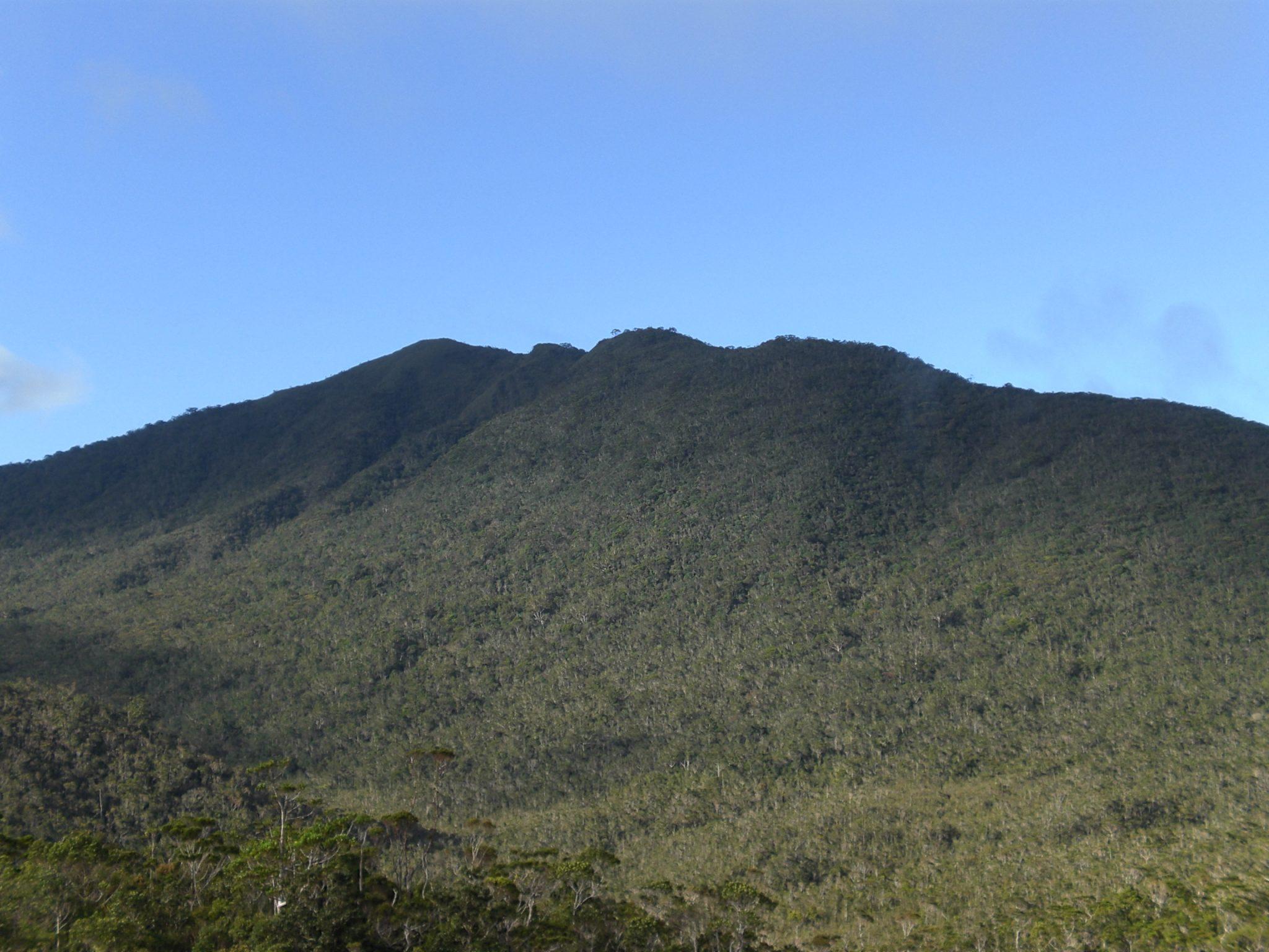 フィリピン・バギオにあるハミギタン山岳地域野生動物保護区